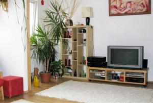na zdjęciu umeblowany duży pokój w mieszkaniu w Warszawie