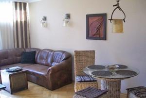na zdjęciu salon w mieszkaniu na sprzedaż w Śródmieściu Warszawy