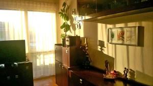 zdjęcie przedstawia duży pokój w mieszkaniu na sprzedaż w Warszawie, dzielnica Śródmieście